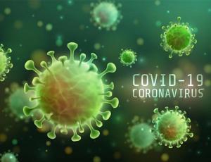 Куда инвестировать во время второй волны COVID-19